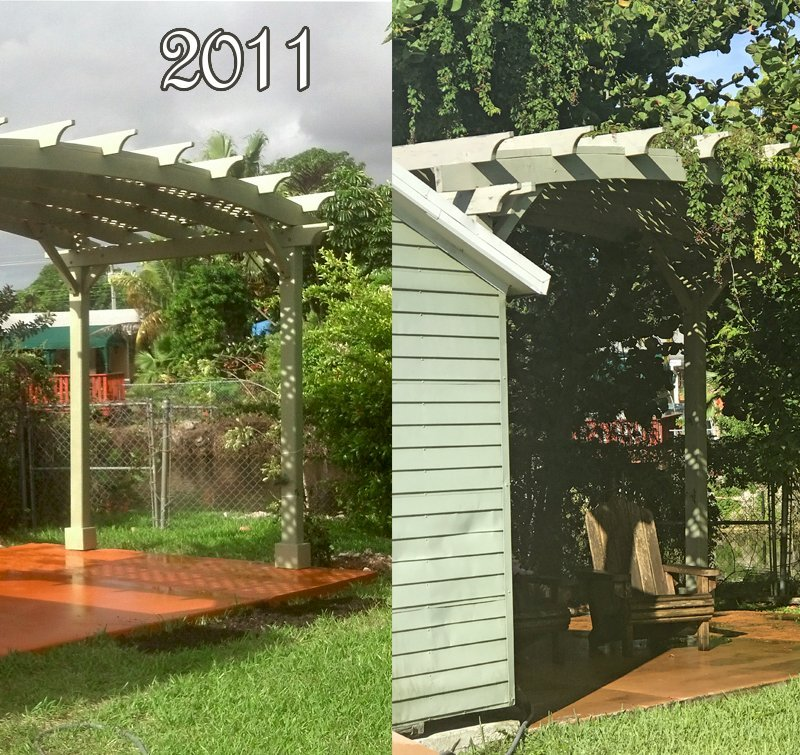 Arched Pergola Kits (Options: 10' L x 20' Arc W, California Redwood, Unattached, Electrical Wiring Trim Kit for 2 posts, Arched Roof with Lattice Panels, 4 Post Anchor Kit for Stone, No Ceiling Fan Base, No Privacy Panels, No Curtain Rods, 9' Post Height, White Primer Option). This pergola was assembled and painted in S. Florida in 2011. The 2017 photo shows how the paint has mostly held up without any maintenance. It is shown here so customers in tough weather areas that chose to paint their shade structures have a good idea how long the paint will hold up before needing retouching (6 to 8 years).