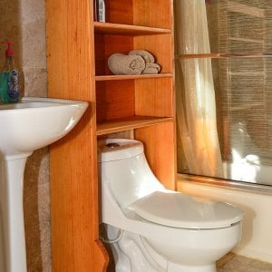 "Bathroom Shelving/Organizer (Options: 25 1/2"" W x 10"" D x 56"" H, Douglas-Fir, Transparent Premium Sealant)"