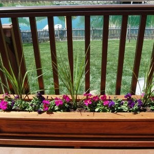 "Carmel Box Planter (Options: 60"" L, 10.5"" W, 10.5"" H, Redwood, 3/4"" Base, No Steel Hangers, No fit over railings, No Growing Vegetables, [custom sealant] Teak Stain Premium Sealant ). Photo Courtesy of Donn Denicke of Stansbury Park, Utah"