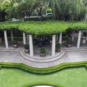 Custom Pergola (Options: 50' half circle, Old-Growth Redwood, No Posts, Transparent Premium Sealant). Pergola Installed in Mexico City. Photo Courtesy of Alfonso Barajas.