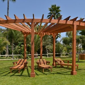 Fan Shaped Corner Pergola (Options: 22' x 15', Mature Redwood, Without roof slats, No Electrical Wiring Trim Kit, 6-Post Anchoring for stone, brick or concrete, No Ceiling Fan Base, 9' Posts, No Curtain Rods, Transparent Premium Sealant). Photo Also Shows 3 Pool Loungers.