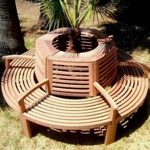Luna Tree Bench (Options: 7 ft, Old-Growth Redwood, Beverage Ledge, No Cushions, No Engraving, Unfinished).