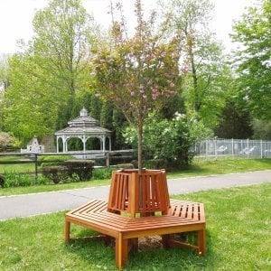 Memorial Tree Bench (Options: 7 ft, California Redwood, No Beverage Ledge, No Cushions, Custom Engraving, Transparent Premium Sealant). Photo Courtesy of Virginia Sarvalon & Canaan Ridge School of Stamford, Connecticut.
