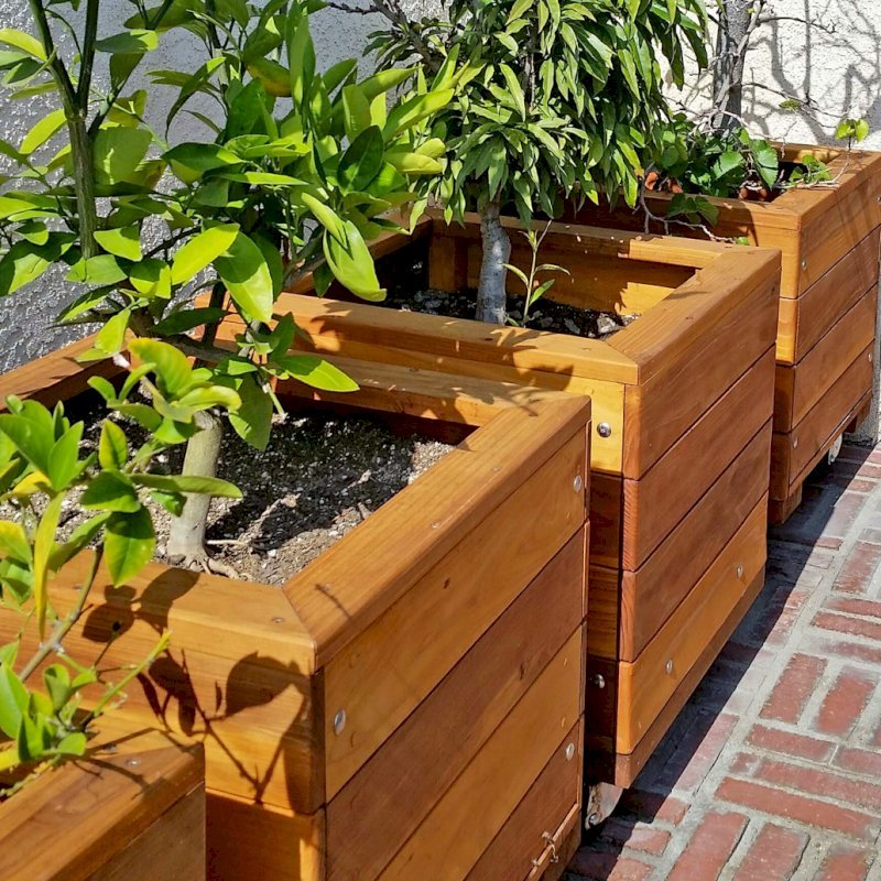 "Mendocino Planters (Options: 18""L, 18""W, 18""H, Redwood, With Casters, No Trellis, Interior of Planter Without Sealant, Transparent Premium Sealant). Photo Courtesy of D. Finkelstein of L.A., CA"