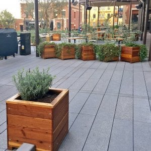 "Mendocino Planters (Options: 24"" L, 24"" W x 24"" H, Redwood, 1 3/4-inch Feet, No Trellis, No Growing Vegetables, Transparent Premium Sealant). Photo Courtesy of Waxman's Pizzeria in Ghirardelli Square, 900 North Point Street, San Francisco, CA, 94109."
