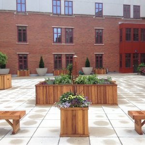 "Napa Planters (Options: Different Sizes, Redwood, No Trellis, No Base or Casters, No Growing Vegetables, Transparent Premium Sealant) and Lighthouse Benches (Options: 4 ft, Douglas-fir, 16"" W, 17"" H). Photo Courtesy of Michael Del Pizzo of Bloomfield, New Jersey."