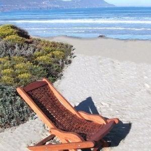 Rio Hammock Chair (Options: Old-Growth Redwood, no pillow, Transparent Premium Sealant)