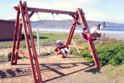 Rory's Big Playground Swing Sets