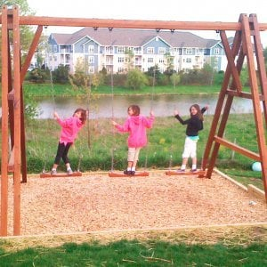 Rory's Giant Playground Swing Set (Options: Mature Redwood, 3 Rory's Swing Seats, Transparent Premium Sealant). 3 crazed young ladies not included...