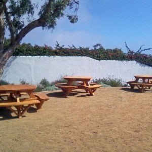 Round Picnic Tables (Options: 5' Diameter, Attached Benches, Redwood, Standard Tabletop, No Lazy Susan, Umbrella Hole & Plug, Transparent Premium Sealant).