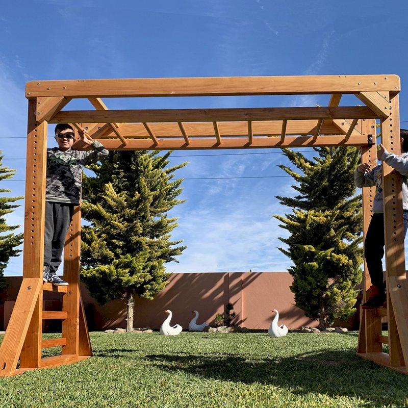Sheldon's Monkey Bar (Options: 8 ft H, 9 ft L, Douglas-fir, Standard Step Option, Transparent Premium Sealant).