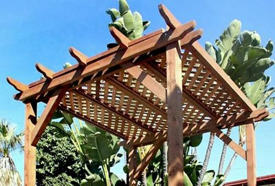 Small Lattice Pergola