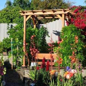 """Small Pergola (Options: 8' x 6', Garden Type, Standard Timbers, California Redwood, Open Roof with Slats at 18"""", Rafters at 18"""", 9 ft Post Height, 4-Post Anchor Kit for Stone, No Ceiling Fan Base, No Privacy Panels, No Curtain Rods, Transparent Premium Sealant)."""