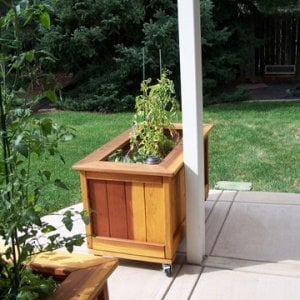 "Sonoma Planter (Options: 48"" L, 24"" W x 24"" H, Redwood, Add Seating Ledge, 4 Casters, No Trellis, No Growing Vegetables, Transparent Premium Sealant). Photo Courtesy of Larry Weller of Arvada, CO."