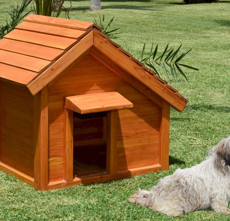 Canine Cottage (Douglas-fir, Transparent Premium Sealant). Dog not included!