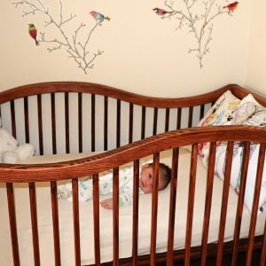 The Skyrah Infinity Crib (Oprions: Redwood,  Add Bottom Drawers, Transparent Premium Sealant)