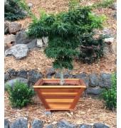 Bonsai Planters